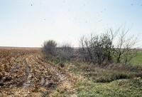 Wildlife contour line on Clifford Chapman's farmstead.