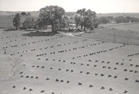 Paul Schuler Farm