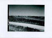 Road cut, 1963