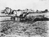 McCormick-Deering hay rake, 1925