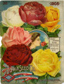Iowa Seed Company Catalog 1908