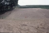 Graded dirt road near corn field