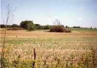 1996 - ART Trust terraces