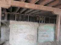 047. Bales of Hay in Barn #5
