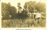 Threshing at the Graham farm, Davis City, Iowa, 1910s