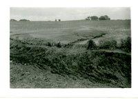 Road Ditch Below H. Smith Farm, 1958