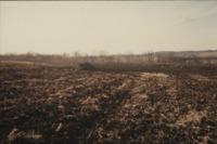 Ray Schneider's Farm.
