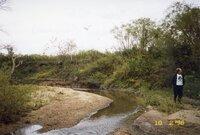 1998 -Roger Hunt from Trees Forever  walks along riverbank<br />