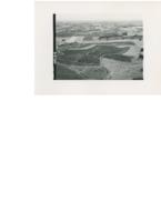 Conservation farming, 1965