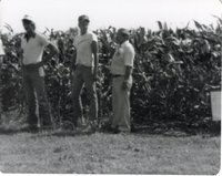 Three Unidentified Men Stand at the Edge of a Cornfield