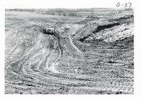 Jepsen farm gully shaping, 1967