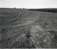 Farmer Stands in a Pasture Close to Corn Ffield