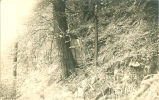 Woman leaning against a tree in the forest, Bellevue, Iowa, 1910s