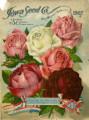 Iowa Seed Company Catalog 1907