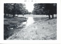 Pond, 1965