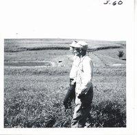 Weiland Bros. farm, 1968