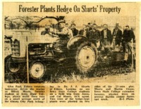 Forester plants hedge on Shurts' acreage.