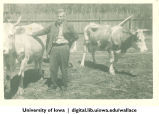 Henry Wallace posing with cows, China, 1944