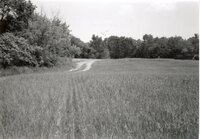 1995 - Proposed Terracing Project site on Dale Edmonds' farm