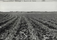 Conservation tillage on the Wahl farm.