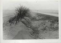 Silt erosion in a ditch.