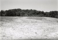 1995 - Proposed Terracing project site on Dale Edmunds' farm