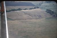 Contoured field, 1947