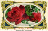 """""""Best birthday wishes,"""" November 15, 1913"""