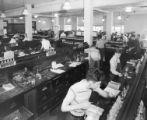 Freshmen chemistry laboratory, 1950