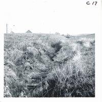Claude Hostert gully before construction, 1969