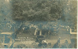 Farmer's Picnic at Westside Park, Rochester, Iowa, August 29, 1908