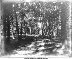Path in City Park, Iowa City, Iowa, 1900s
