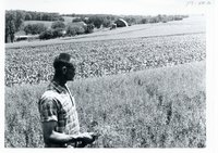 Floyd Peters views his contour stripped acres, 1967