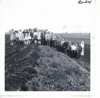 Preston fifth graders observing Harold Sullivan farm's back slope terrace, 1969