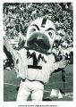 Dean A. Sieperda as Herky, The University of Iowa, 1967