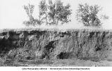 Buchanan gravels, Winthrop, Iowa, late 1890s or early 1900s