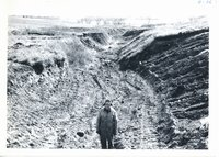 Erwin Jepsen farm gully after clearing, 1966