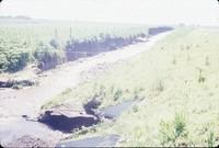 Gully erosion.