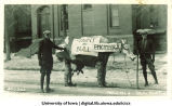 Mecca Day parade cow, The University of Iowa, 1923