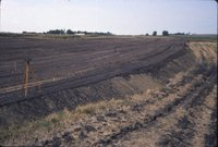 Farmland survey leveled field, 1977