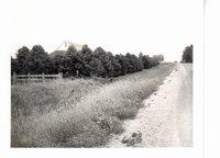 Ray Rinnan, Highland Township, 1979