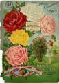 Iowa Seed Company Catalog 1913