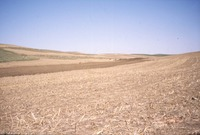 Spotts Farm Inc