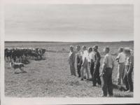 Conservation Tour - Pasture.