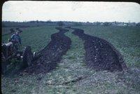 Frank Nebel farmland, 1946