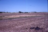 Larry Braby's Farm Before and After a Wetland Construction Project.