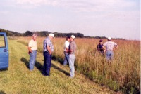 Unidentified people standing in stand of tall grass