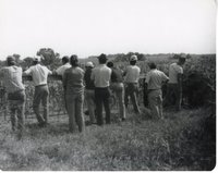 Ten People Lean Over Fence by Corn