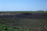 Sediment basin in a farm field.
