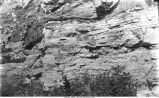 Cedar Valley Stage limestone with lentincular masses included between the strata, Iowa City, Iowa, late 1890s or early 1900s